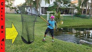 MEGA HAND NET Catches GIANT EXOTIC SNAKEHEAD FISH! Amazing!