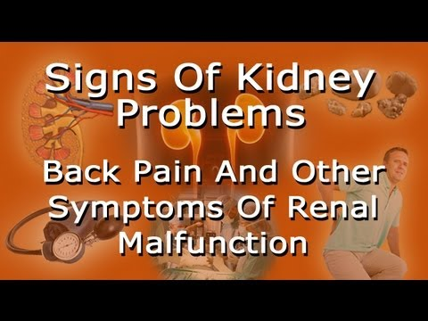 kidney location in humans diagram 06 chevy cobalt radio wiring signs of problems - lower back pain and other symptoms renal trouble youtube