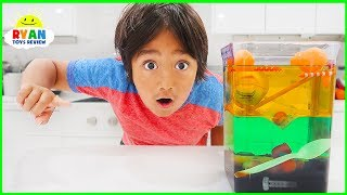 Sink or Float Density Tower Science Experiments for Kids!!!