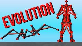 Evolving a Human! - Evolution Simulator