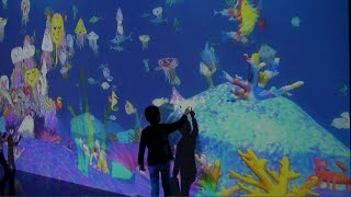 teamLab Shake! Art Exhibition and Learn and Play! teamLab Future Park
