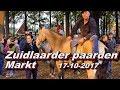 Zuidlaarder Paardenmarkt 17 10 2017