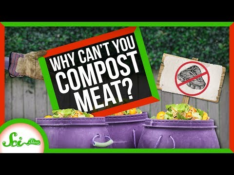 Why Can't You Compost Meat?