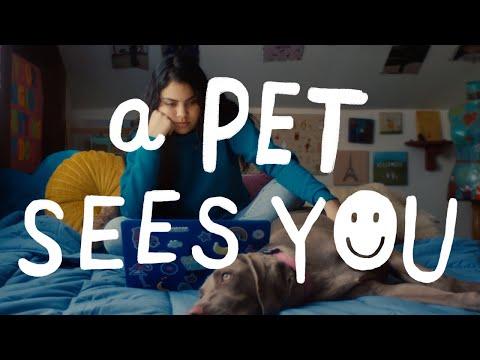 A Pet Sees You