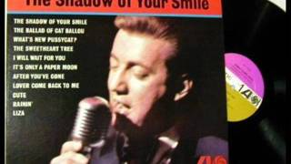 Bobby Darin - The Shadow Of Your Smile (1966)