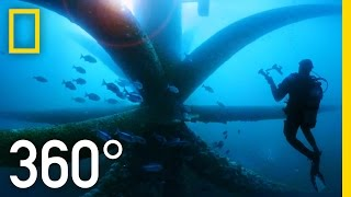 360° Dive Through an Oil Rig Ecosystem   National Geographic
