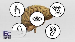 Эмоциональный интеллект | Большой скачок