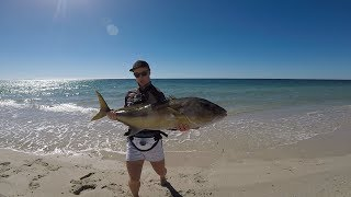 BEACH FISHING SURPRISE!
