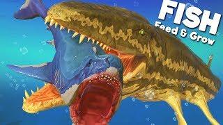 *NEW* PREHISTORIC PROGNATHODON IS THE ULTIMATE PREDATOR! | Feed and Grow Fish