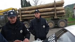 Доста: крадений ліс - в дитячі садочки!