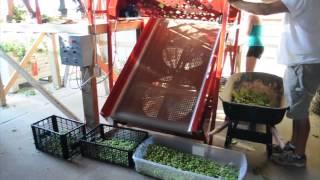 Small Scale Hop Harvester - Bine 3060