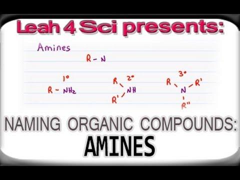 Naming Amines Using Iupac Nomenclature For Organic