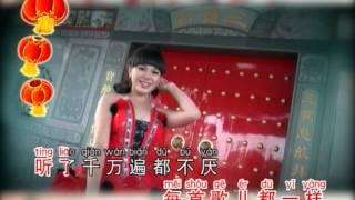 卢美慧 - 新年快乐 + 新年颂(2015贺岁专辑)