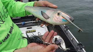 Fishing GIANT Baits For BIG Fish!! Unforgettable Day