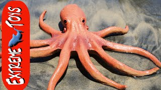 The Octopus Stow Away! Mysterious Squid Toy Sea Creature on the Beach. ″Part 1″