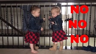 INDIE AND EVIE TELL EACH OTHER ″NO NO NO NO″