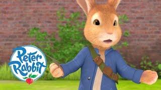 Peter Rabbit - Danger in the Garden | Cartoons for Kids