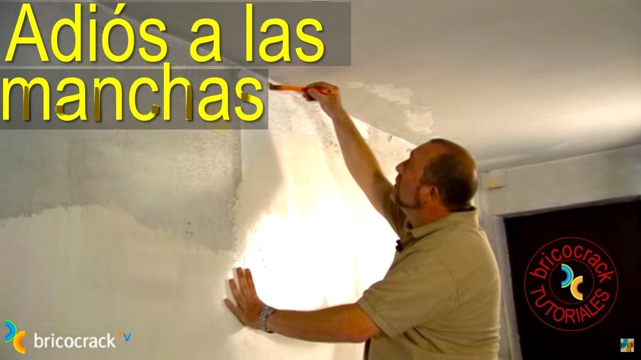 Tapar manchas y pintar en ambientes hmedos BricocrackTV  YouTube