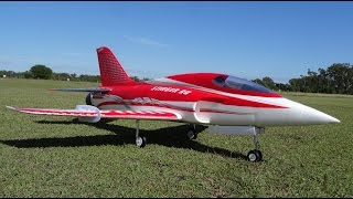 World's Fastest 6S Freewing Stinger 90 EDF JET @ 252km/h   RC Skunk Works ADP