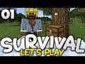 A FANTASTIC START! - Survival Let's Play Ep. 01 - Minecraft Bedrock (PE W10 XB1)
