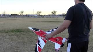 Freewing Stinger 64 Maiden Flight and Crash!!