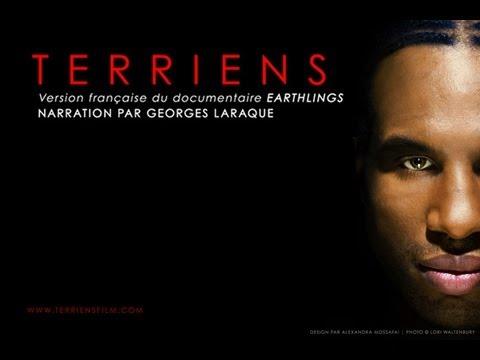 Terriens