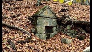 Загадочные Находки в Глубоком Лесу