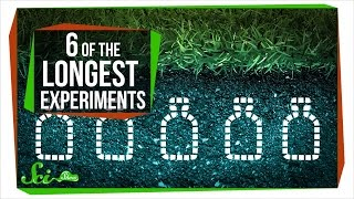 6 of the Longest Experiments Ever