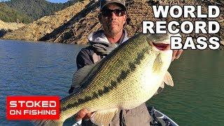 World Record Bass | Part 1