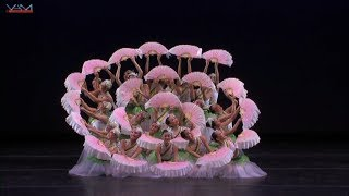 YAGP 2014 Ensembles″Jasmine″1st place in Regional, Top12 in NY final