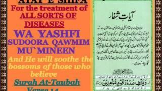 Moulana Junaid Healing of Major Diseases through Quran, Evil