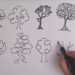 Diagram Of A Tropical Forest Menstrual Cycle With Ovulation How To Draw Tree - 8 Different Ways Drawing Trees Youtube