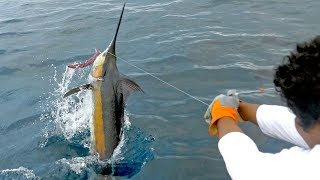 EPIC Blue Marlin Fishing in Costa Rica