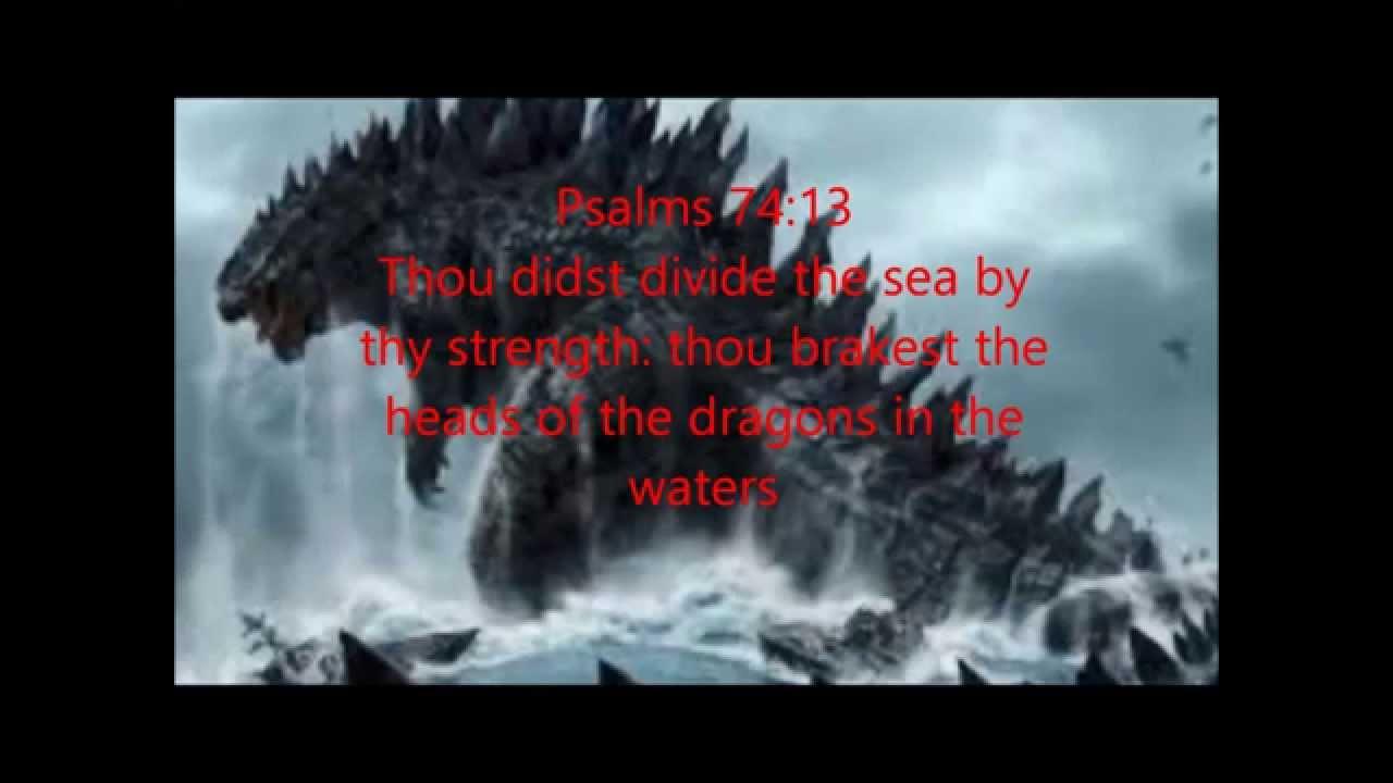 A Glimpse Into The Marine Kingdom Youtube