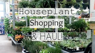 Houseplant Shopping at 7 Big Box Store Locations!   Home Depot, Lowe's, Walmart Indoor Plant Haul!