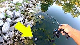 MICRO FISHING Tiny Rock Cracks!! 15 Minute CHALLENGE!!