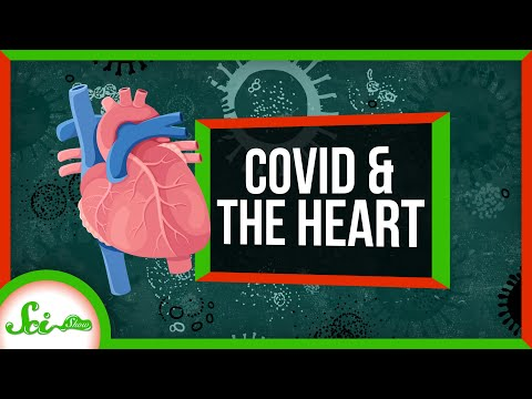 Why Athletes Are Worried About COVID: Its Toll on the Heart