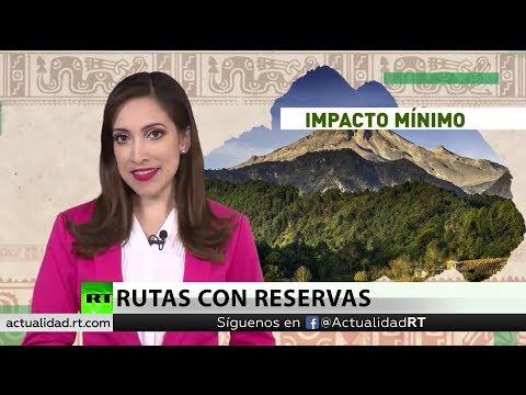 El Tren Maya de México: ¿Megaproyecto de desarrollo o desafío ambiental?