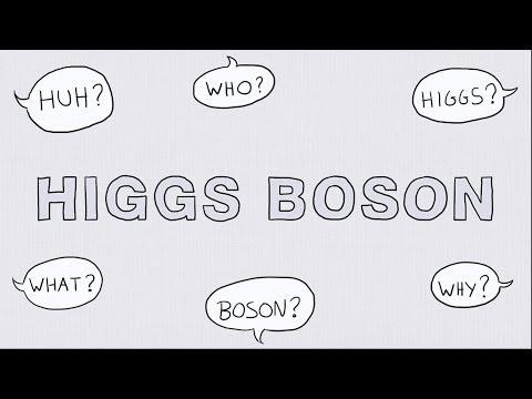 Gauge Boson