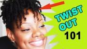 twist natural hair tutorial