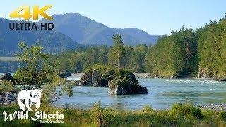 Siberian River Sounds