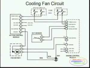 Cooling Fans & Wiring Diagram  YouTube