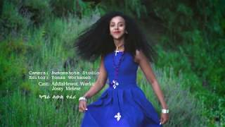 Mekdes Abebe - መቅደስ አበበ | New Ethiopian Official Music - Fikir ena Wana