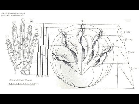 Episode 1 How To Draw Fibonacci Retracement Lines On Stock