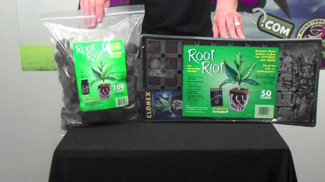 Root Riot Vs Rapid Rooter