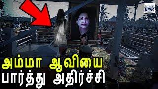 அம்மா ஜெயலலிதா ஆவியை பார்த்து அதிர்ச்சி அடைந்த மக்கள் பயத்தில் சசிகலா Amma Jayalalitha Ghost Spirit