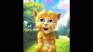 Mèo Ginger dạy m.n k đc nói dối:v