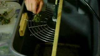 Homemade Bud Trimmer - $14 rotary tool plus household objects