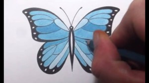 butterfly draw butterflies drawings pencil drawing step flowers google
