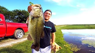 Catching GIANT Bass on Topwater Frogs!!!